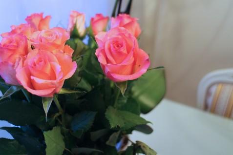 Sain taas kukkia pari päivää sitten. Kyllä silmä lepää!