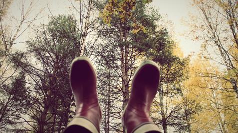 feettrees